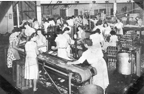 women in the post industrial society The status of women in india has been subject to many great changes over the past few millennia the position of indian women in society deteriorated during this period in rural india in the agriculture and allied industrial sectors.